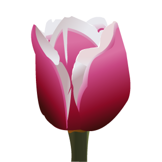 April 2018 Tulip Fairy Charm